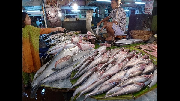 Top 10 fish markets in mumbai for fresh fish and seafood for Fresh fish shop near me