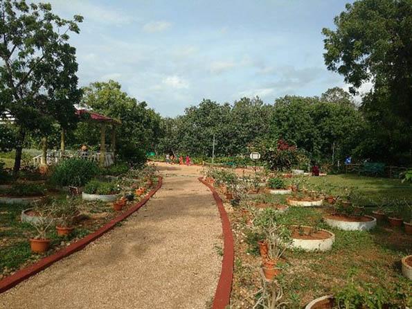 Botanical Garden - TripAdvisor
