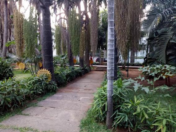 Palmetum - Google Maps