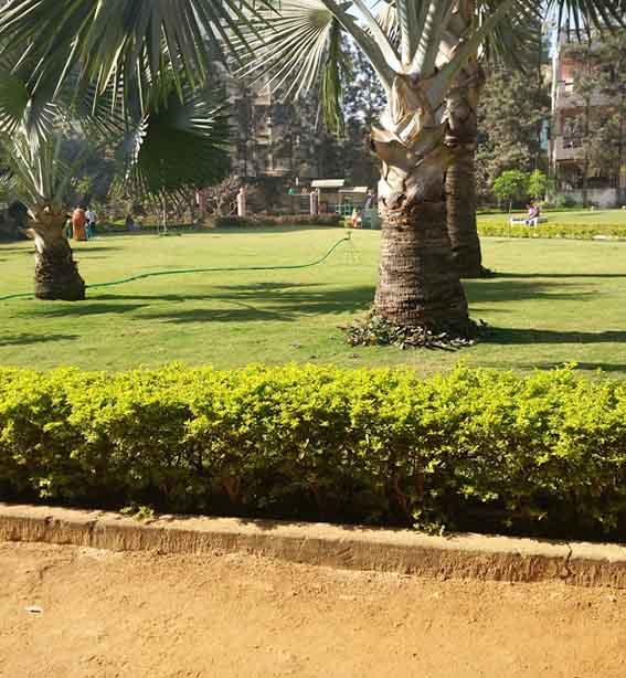 Telecom Nagar GHMC Park - Google Maps